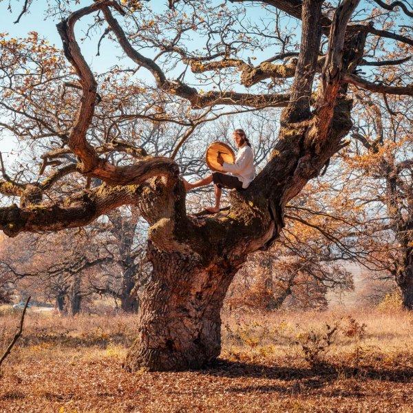 martin-tham-strom